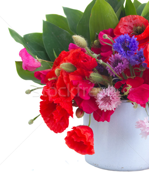 Poppy, sweet pea and corn flowers Stock photo © neirfy