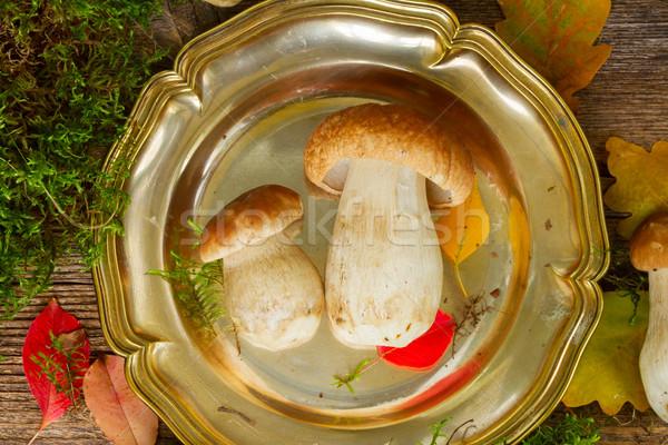 プレート キノコ 苔 葉 木製のテーブル 花 ストックフォト © neirfy