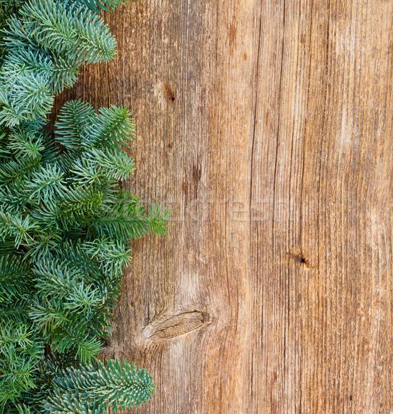 Natale fresche evergreen albero rami Foto d'archivio © neirfy