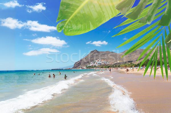 Strand tenerife zomer tropische kustlijn water Stockfoto © neirfy