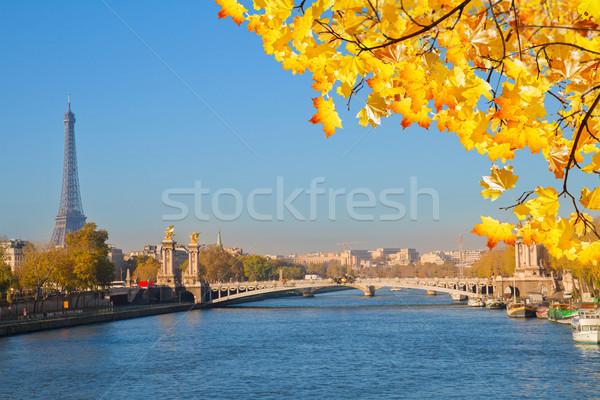 Alexandre III Bridge and Eiffel tower, Paris Stock photo © neirfy
