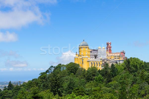 Portugal groene park gebouw bos Stockfoto © neirfy