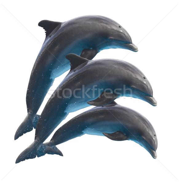 Skoki delfiny biały trzy odizolowany wody Zdjęcia stock © neirfy