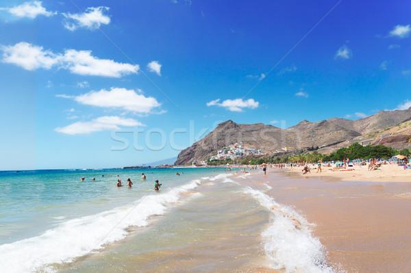 Strand tenerife kustlijn hemel boom landschap Stockfoto © neirfy