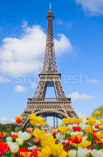 Eyfel Kulesi Fransa güneşli bahar gün Stok fotoğraf © neirfy