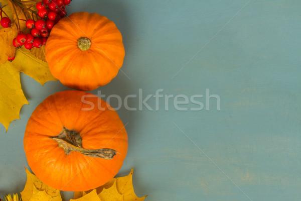 pumpkins on blue table Stock photo © neirfy