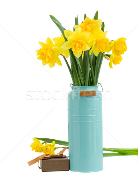 Virágcsokor nárciszok virágok kék váza izolált Stock fotó © neirfy