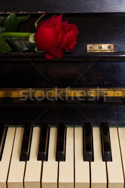 Rose Red notas papel piano frescos flor Foto stock © neirfy