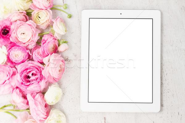 Rosa blanco flores cumpleanos verano retro Foto stock © neirfy