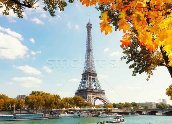Eiffel tour rio cair árvore céu Foto stock © neirfy