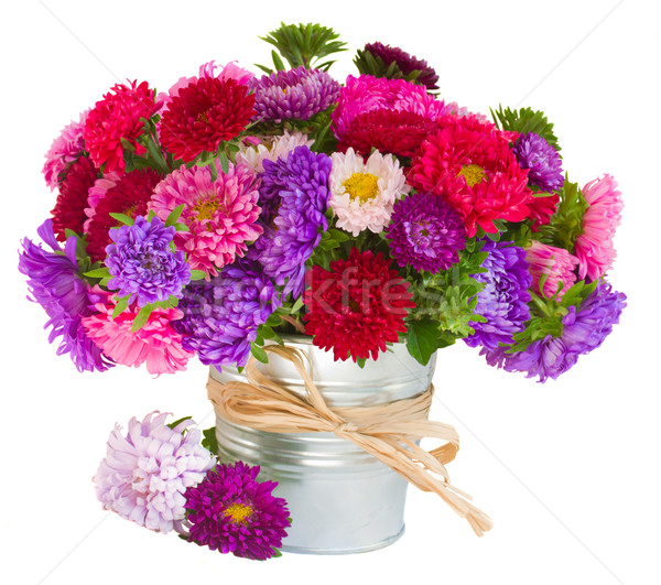 bouquet of   aster flowers in pot Stock photo © neirfy