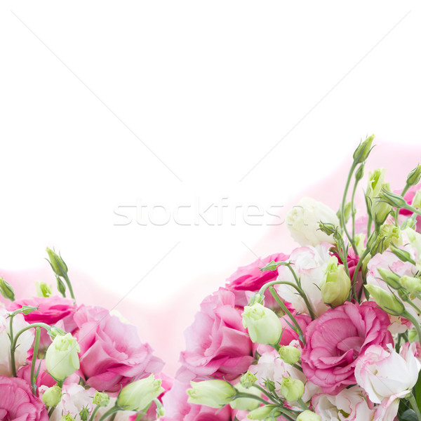 bunch of  pink eustoma flowers Stock photo © neirfy