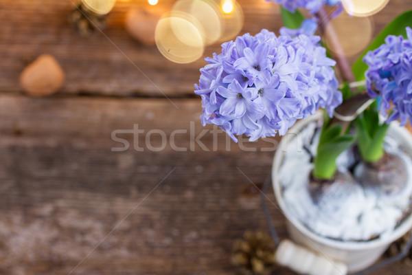 цветы белый банка bokeh фары Сток-фото © neirfy