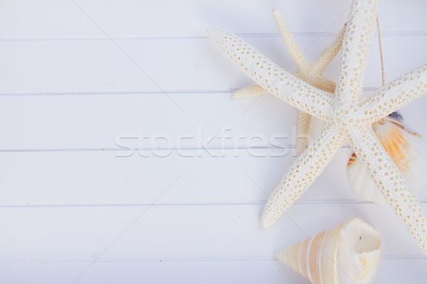пляжное полотенце ракушки кадр лет сцена белый Сток-фото © neirfy