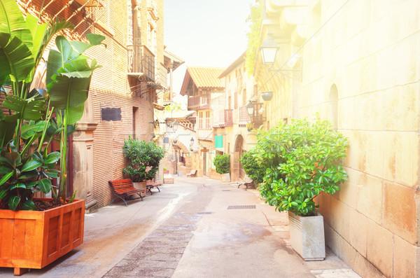 Calle luz del sol tradicional arquitectura edificio Foto stock © neirfy