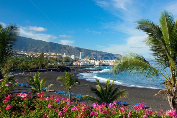 Tenerife İspanya gökyüzü dağ okyanus Stok fotoğraf © neirfy