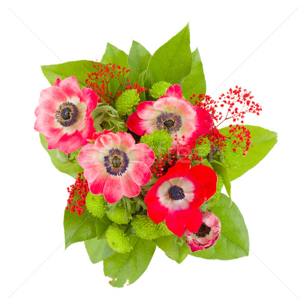 anemone flowers bouquet Stock photo © neirfy