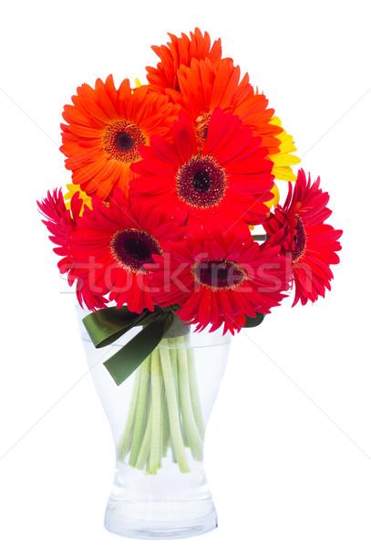 fresh gerbera flowers posy  in vase Stock photo © neirfy