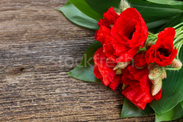 Poppy flowers on wood Stock photo © neirfy