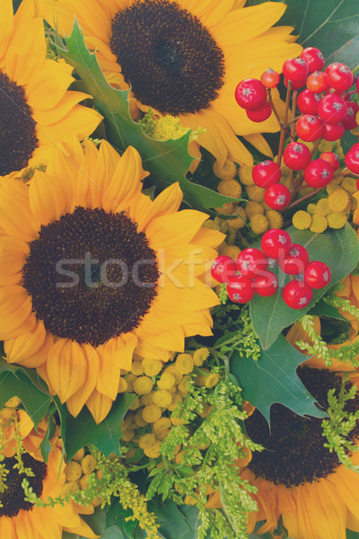 Sunflowers with green leaves  Stock photo © neirfy