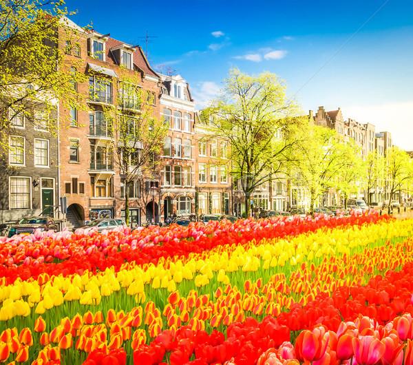 Houses of Amsterdam, Netherlands Stock photo © neirfy