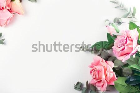 Stok fotoğraf: Güller · yaprakları · pembe · çiçek · çerçeve · beyaz