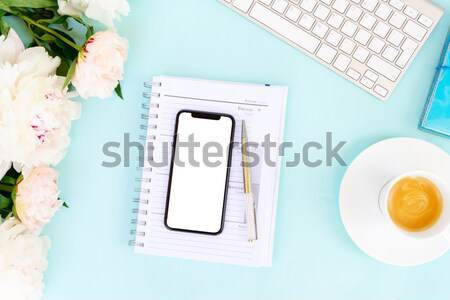 Ev ofis büro telefon mavi klavye modern Stok fotoğraf © neirfy