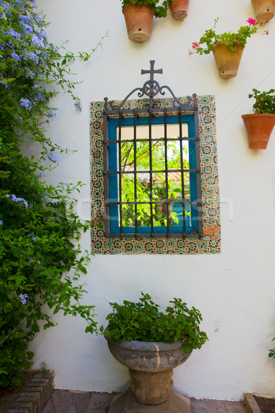 window in andalusian patio Stock photo © neirfy