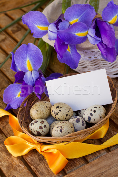 easter eggs and irises with greeting card Stock photo © neirfy