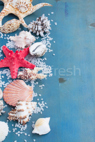 Sınır deniz tuzu kabukları mavi tablo Stok fotoğraf © neirfy