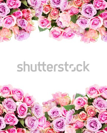 bouquet of fresh roses Stock photo © neirfy