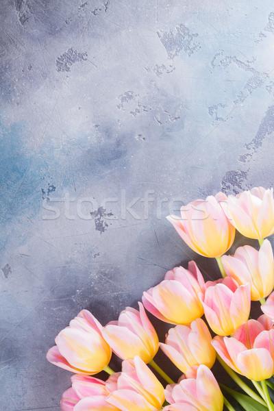 розовый желтый тюльпаны серый каменные Сток-фото © neirfy