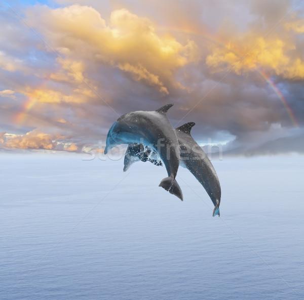 Twee springen dolfijnen mooie zeegezicht diep Stockfoto © neirfy