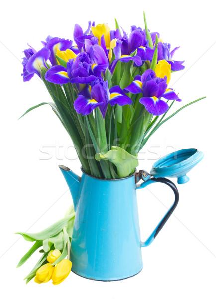 spring tulips and irises Stock photo © neirfy