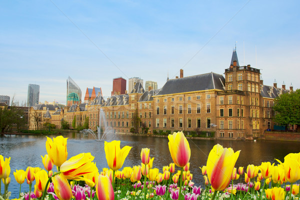 Holanda cidade centro palácio primavera escritório Foto stock © neirfy