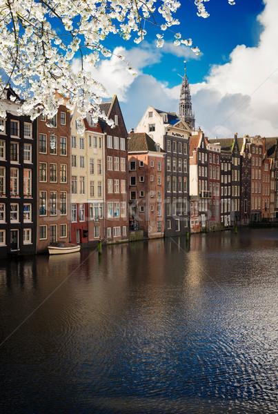 Casas Países Bajos típico holandés canal Foto stock © neirfy