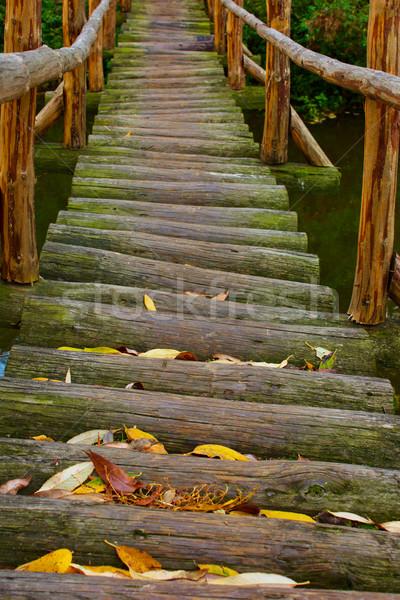 Stok fotoğraf: Ahşap · köprü · eski · nehir · orman · su