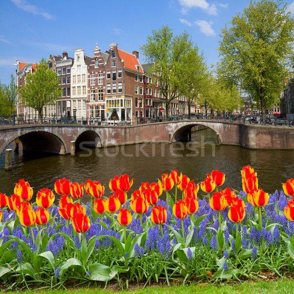 Stock photo: bridges of canal ring, old town of  Amsterdam