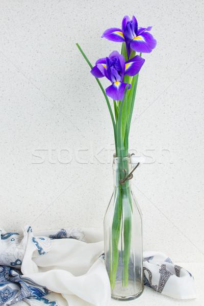 Сток-фото: два · синий · цветы · стекла · ваза · цветок