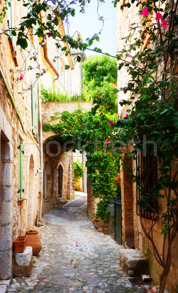 beautiful old town of Provence Stock photo © neirfy