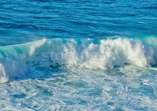 crushing wave Stock photo © neirfy