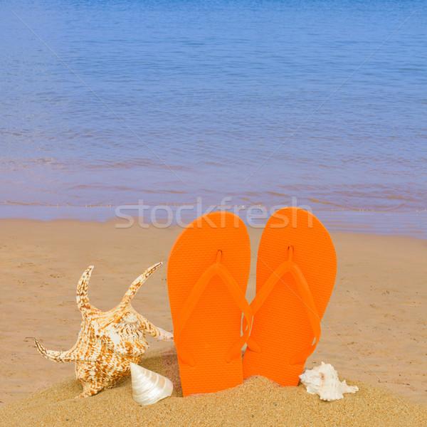 оранжевый сандалии ракушки песок пляж пару Сток-фото © neirfy