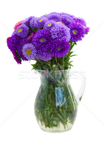 bouquet of purple aster flowers Stock photo © neirfy