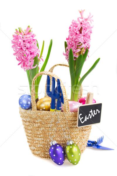 Hyacint bloemen eieren paaseieren geïsoleerd witte Stockfoto © neirfy