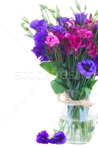 Mor leylak rengi çiçekler cam vazo yalıtılmış Stok fotoğraf © neirfy