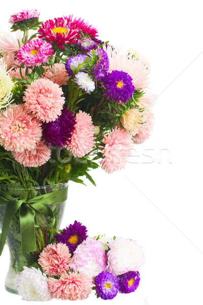 mix of aster flowers Stock photo © neirfy