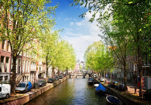 Une Amsterdam holland vieille ville vert arbres Photo stock © neirfy