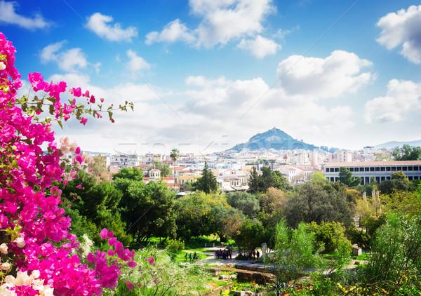 Foto stock: Cityscape · Atenas · colina · Grécia · flores · céu