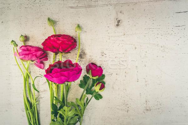 çiçekler karanlık pembe beyaz ahşap üst Stok fotoğraf © neirfy
