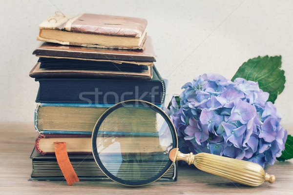 Foto stock: Velho · livros · flores · olhando · vidro · vintage